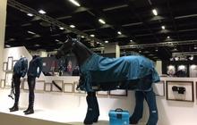 Zirgu piederumu un barības izstāde ''Spoga Horse'' (http://www.spogahorse.com/spoga-horse-spring/index.php) notika Vācijas pilsētā Ķelnē. Alfa Agro pārstāvis apmeklēja izstādi, lai tiktos ar dažādu valstu zirgu barības un barības piedevu tirdzniecības pārstāvjiem. Ceram uz labu sadarbību!