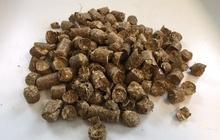 TOP4: Lūk, pirmās saražotās salmu granulas! 08.09.17. Alfa Agro testēja salmu granulu ražošanu zirgu pakaišiem (plašāku informāciju par to izmantošanu zirgu pakaišiem varat atrast šeit: http://zirgam.lv/2014/08/11/tests-salmu-granulu-pakaisi/. Salmu granulas ir samērā mīkstas, viegli sadalās, nav putekļainas un spēj pāris minūšu laikā uzsūkt šķidrumu. Tās ir populārs pakaišu materiāls zirgiem daudzās Eiropas valstīs.