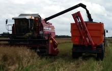 3. Vēlamies pateikties visiem zemniekiem, kas ņēma līdzdalību  projektā ''Gomselmash Latvia'', kurā bija iespēja iznomāt kombainus ''Palesse''. Zemnieki ir apmierināti gan ar kombainu jaudu, gan ar servisu. Lai pasūtītu kombainus nākamai sezonai, interesentiem iesakam griezties pie Agrario tehnikas tirdzniecības un nomas vadītāja Ivara Brālēna, tālr. 27 879 133, vai arī apmeklēt ''Gomselmash Latvia'' mājaslapu http://gomselmash.lv/lv/kontakti/.